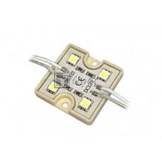 Модуль PGM5050-4 12V IP65 Blue